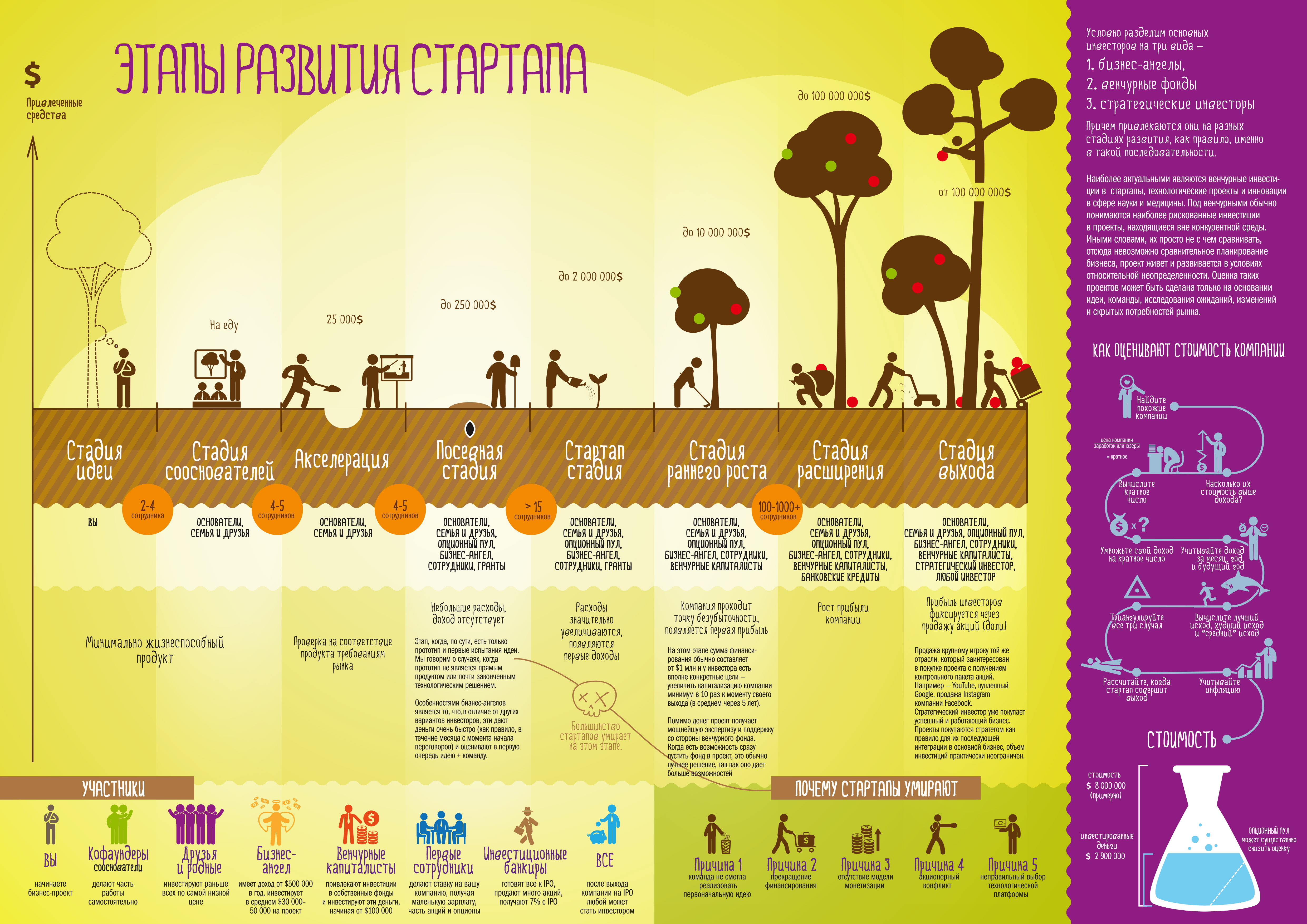 Этапы развития стартапа